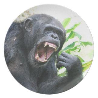 Chimpancé que descubre los dientes platos de comidas