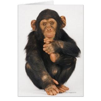 Chimpancé (trogloditas de la cacerola) tarjeta de felicitación