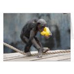 Chimpancé y Ducky parecido a la goma Felicitación