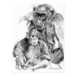 Chimpancé y mamá postal