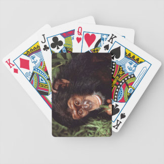 Chimpansee Bicycle Playing Cards