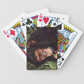 Chimpansee Baraja Cartas De Poker