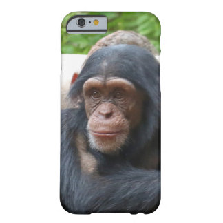 Chimpanzee_2015_0504 Barely There iPhone 6 Case