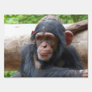 Chimpanzee_2015_0504 Lawn Sign