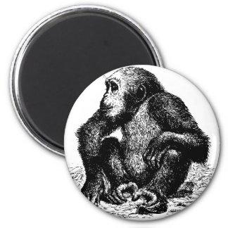 chimpanzee 2 inch round magnet