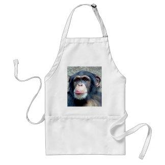 Chimpanzee Aprons