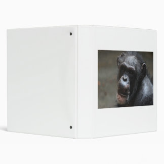 Chimpanzee Binder