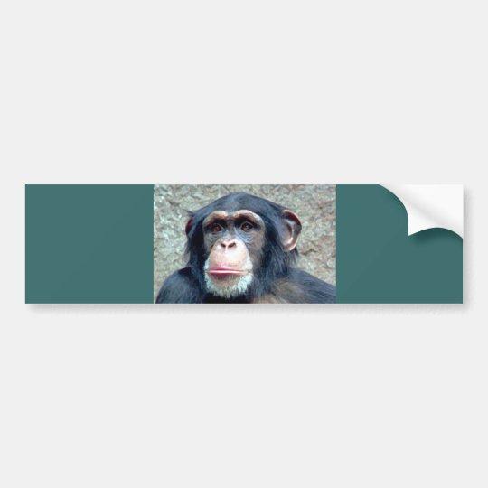 Chimpanzee Bumper Sticker