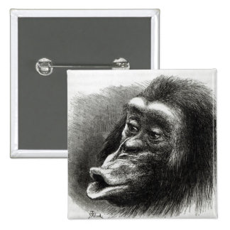 Chimpanzee Disappointed and Sulky 2 Inch Square Button