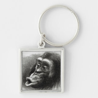 Chimpanzee Disappointed and Sulky Keychains