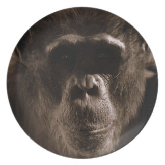 Chimpanzee Face Melamine Plate