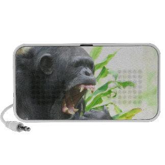 Chimpanzee Fangs Portable Speakers