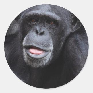 Chimpanzee Fun Round Sticker