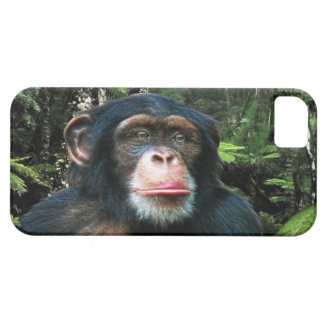Chimpanzee Great Ape Wildlife Animal iPhone 5 Case
