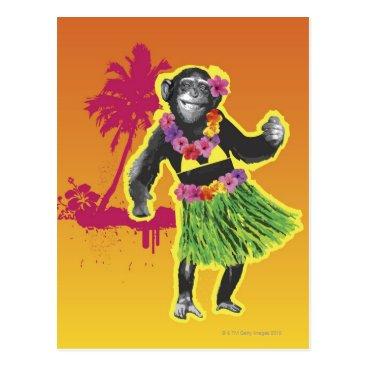 prophoto Chimpanzee Hula Dancing Postcard