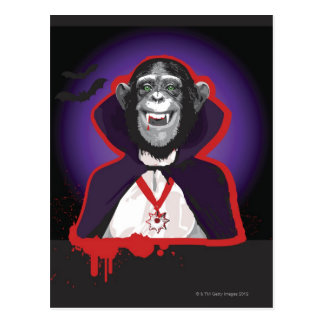 Chimpanzee in Dracula Costume Postcard