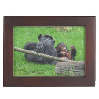 Chimpanzee Keepsake Box