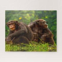 Chimpanzee Monkey. Jigsaw Puzzle