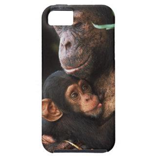 Chimpanzee Mother Nurturing Baby iPhone SE/5/5s Case