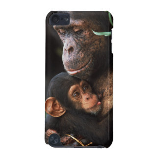Chimpanzee Mother Nurturing Baby iPod Touch (5th Generation) Cover