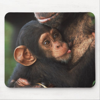 Chimpanzee Mother Nurturing Baby Mouse Pad