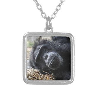 Chimpanzee Necklaces