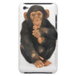 Chimpanzee (Pan troglodytes) Barely There iPod Cover