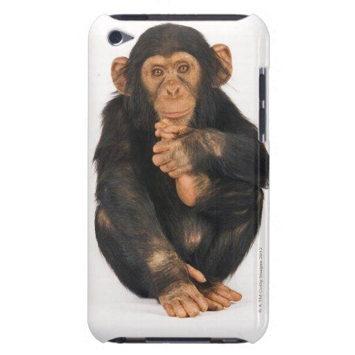 Chimpanzee (Pan troglodytes) Barely There iPod Cover