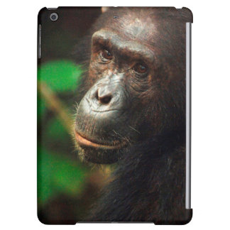 Chimpanzee (Pan troglodytes) Portrait in Forest Case For iPad Air