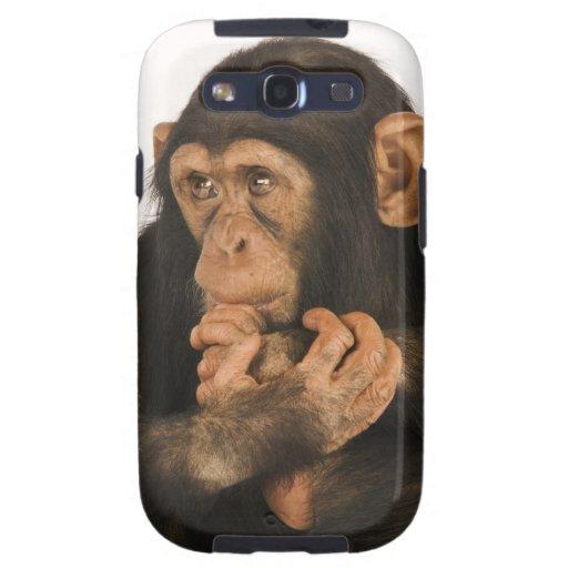 Chimpanzee (Pan troglodytes). Young playfull 2 Galaxy S3 Cover