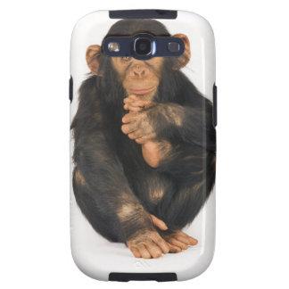 Chimpanzee (Pan troglodytes). Young playfull Samsung Galaxy SIII Covers