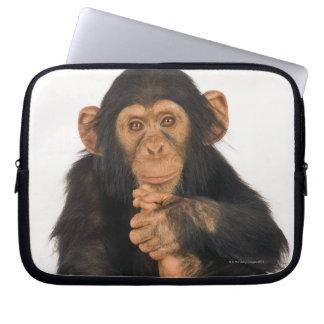 Chimpanzee (Pan troglodytes). Young playfull Computer Sleeve
