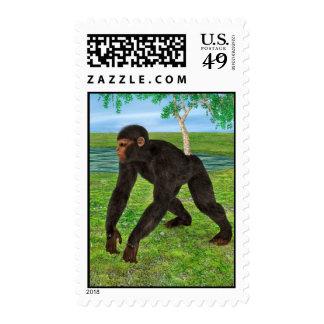 Chimpanzee Postage