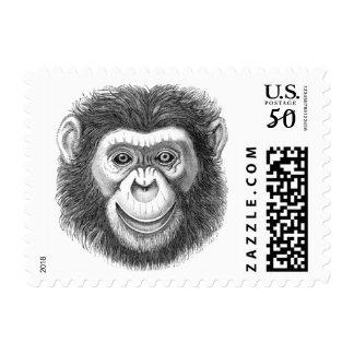 Chimpanzee Postage Stamps