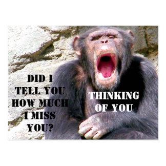 Chimpanzee_ Postcard