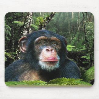 Chimpanzee & Rainforest Wildlife-support Mousepad