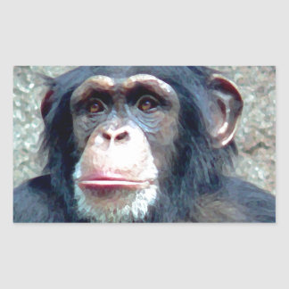 Chimpanzee Rectangular Sticker