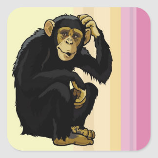 chimpanzee square sticker