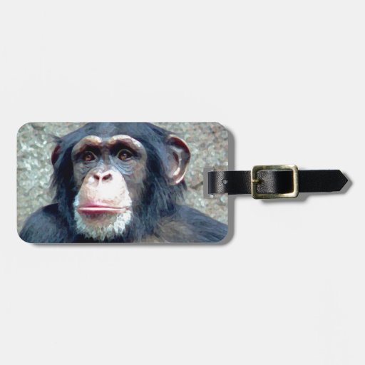 Chimpanzee Tags For Bags