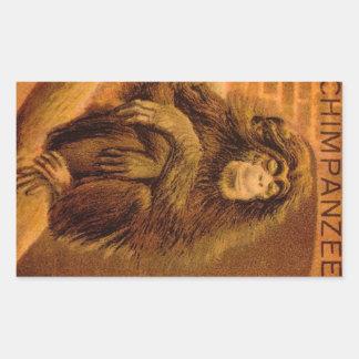 Chimpanzee Vintage Magic Lantern Slide 1890s Rectangular Sticker
