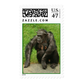 Chimpanzee with a Baby - Postage