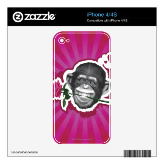 Chimpanzee with a Rose in his Mouth Skin For The iPhone 4