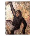 chimpanzeehangingintree002_original libros de apuntes
