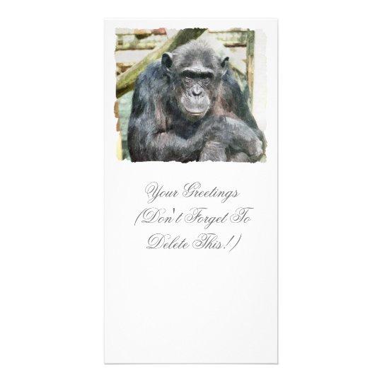 CHIMPANZEES CARD
