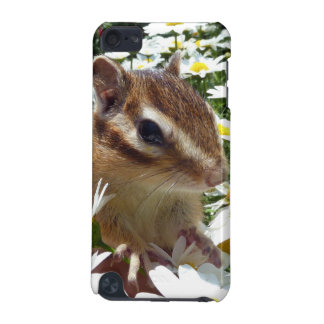 Chimunks , シマリス iPod touch 5G cover