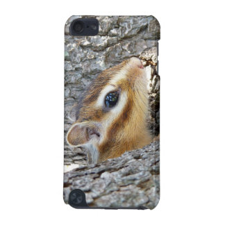 Chimunks , シマリス iPod touch (5th generation) case