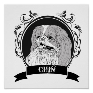 CHIN 3 POSTERS