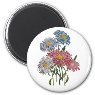 China Asters 2 Inch Round Magnet
