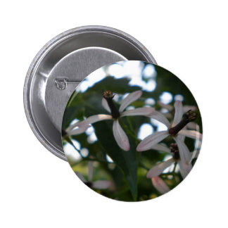 China Berry Flowers Pinback Button