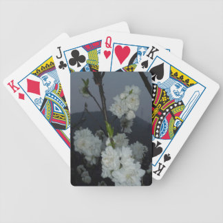 China Flowers Bicycle Playing Cards